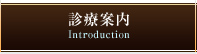 診療案内 Introduction